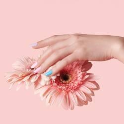 Avete già provato i nuovi colori della Spring Collection? 🌷🌻 Tantissime tonalità delicate e vivaci per regalare un look primaverile alla tua nailart.  Trovate la collection sullo shop e nel nostro punto vendita🌻 ___________________________  ✨  𝐒𝐇𝐎𝐏 𝐎𝐍𝐋𝐈𝐍𝐄 ✨  Tap sul post o link in bio  #Cupio #Cupionails #CupioToGo #Cupiogel #SpringCollection #Spring #springmanicure #underthefloralspell #nails #nailart #nailstagram #nailsofinstagram #naillover #nailaddict #glitter #glossy #simplenails #nailsoftheday #nailsdesign #nailsonfleek #manicure #instanails #nailsart #flower
